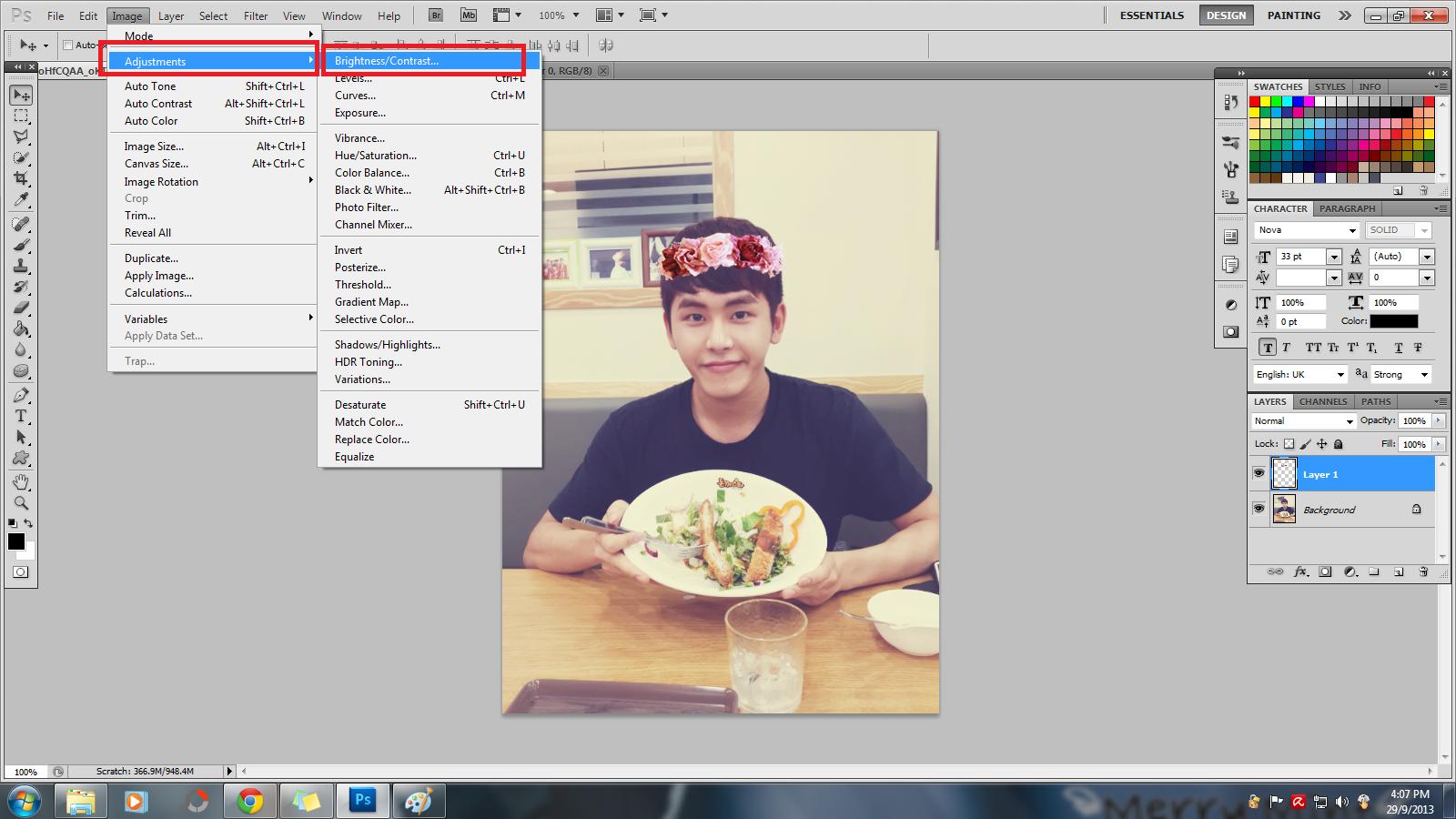 Untuk aku, aku akan gunakan gambar Hoya as model.