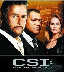 CSI 13×14