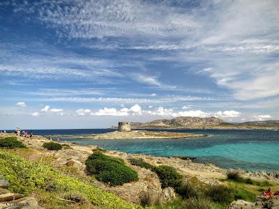 """la spiaggia """"La Pelosa"""" in Sardegna por Cristina Sanna"""