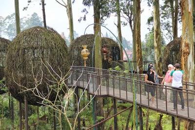 Alamat Dusun Bambu-Biaya Dusun Bambu