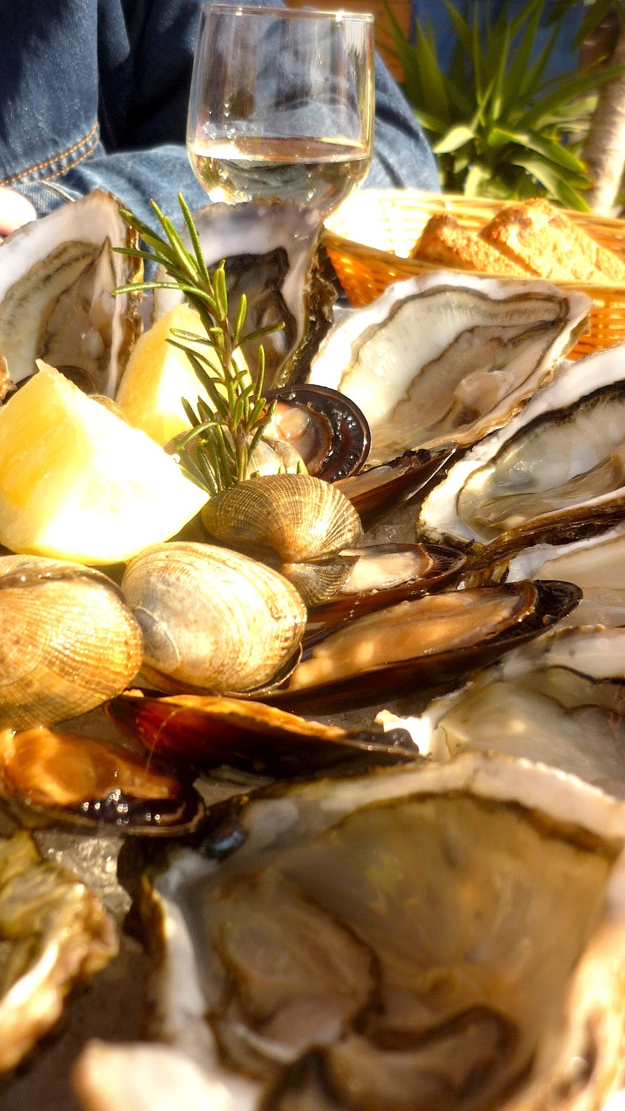 première eau des huîtres