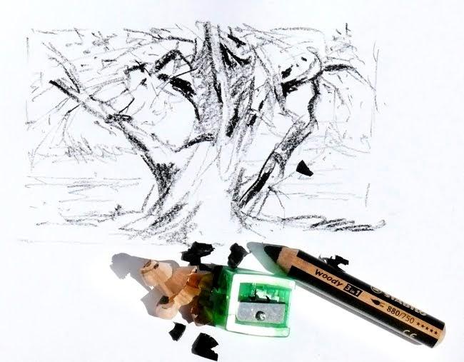 zeichnen in der landschaft zeichnen mit dem woody. Black Bedroom Furniture Sets. Home Design Ideas