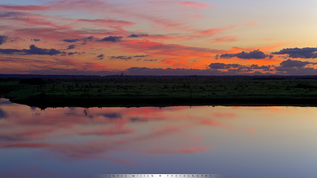 Zonsondergang @ Oostvaardersplassen - Sunset @ Oostvaardersplassen