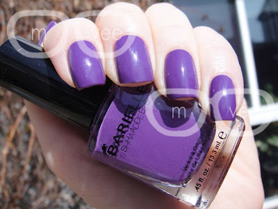 Barielle Grape Escape swatch