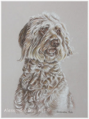 pet portrait drawing and painting, dog drawing