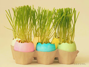 Wheat Grass Centerpiece