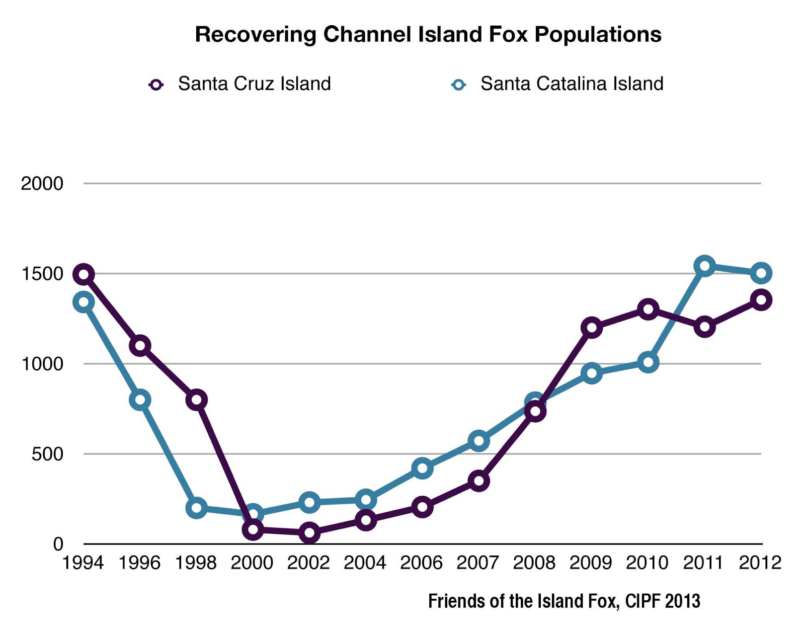 Friends Of The Island Fox 2013 Bald Eagle Diagram Golden Related Keywords Suggestions From 2000 To 2007 Foxes Increased In Captive Breeding Facilities On Each Islands And Were Gradually Released Into Wild