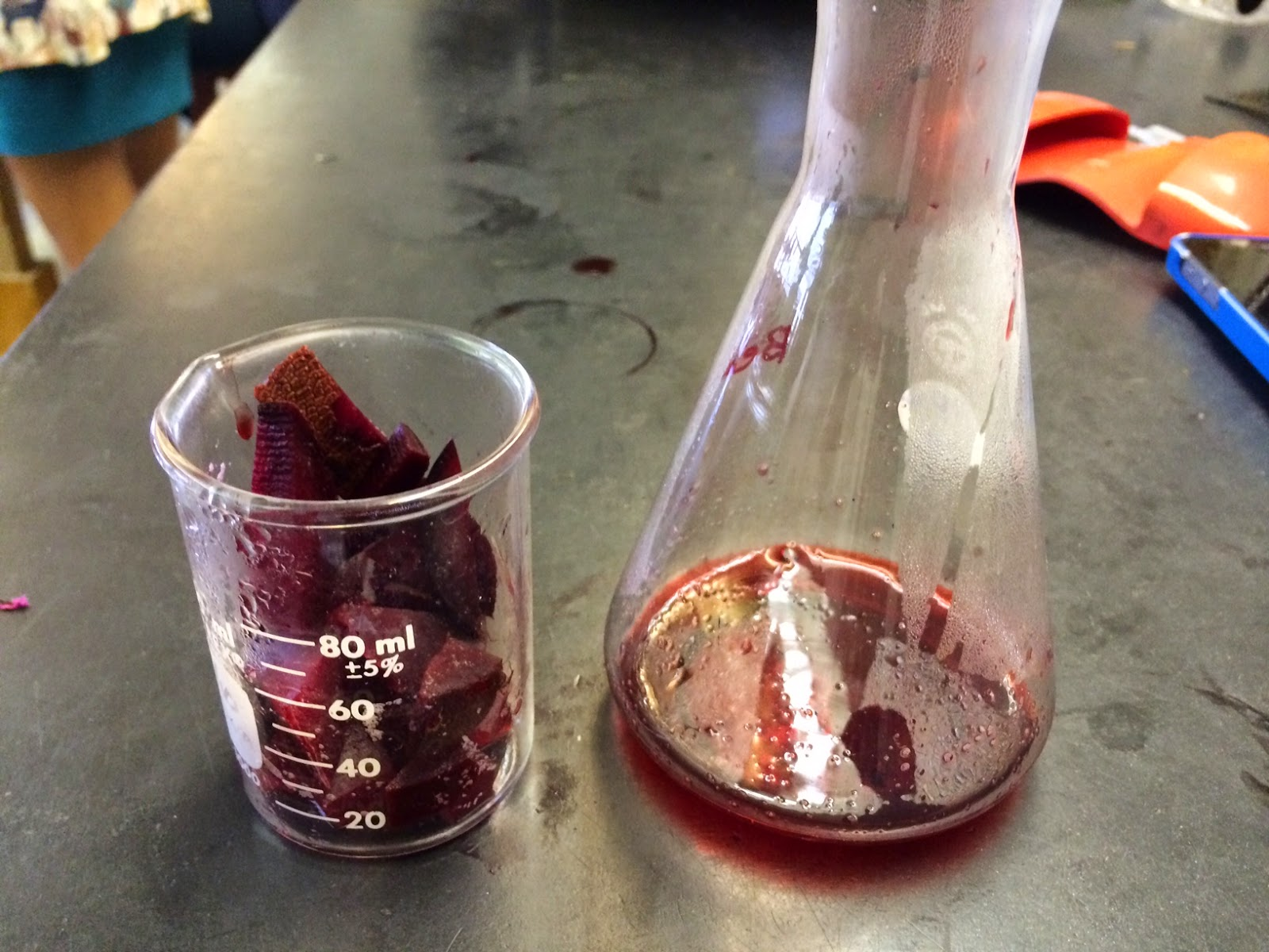 pigment released from beetroot experiment coursework This is denoted in the subject content in bold type and placing slices of fresh beetroot in different they are packed with a red pigment called.
