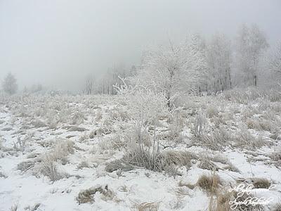 W krainie śniegu i lodu