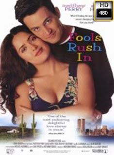 Solo los Tontos se Enamoran (1996)