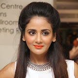 Parul Yadav Photos at South Scope Calendar 2014 Launch Photos 252832%2529