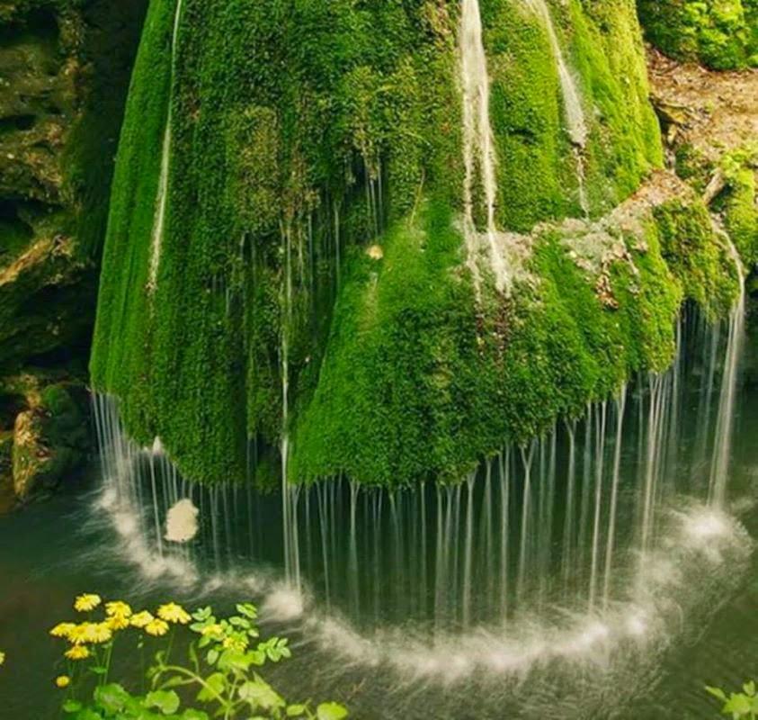Bigar Cascade Falls - Waterfall in Romania - Bozovici (Romania)