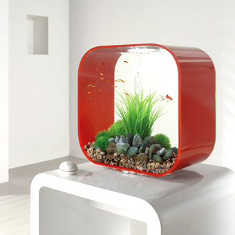 Co9 biorb life collection fish tanks for Square fish tank