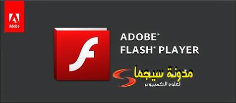 adobe flash player 17