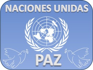 Organización Naciones Unidas