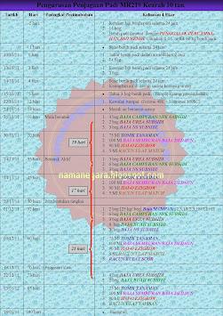 Jadual Pengurusan Penjagaan Padi MR219 Kearah 10 Tan Musim 2/2011.