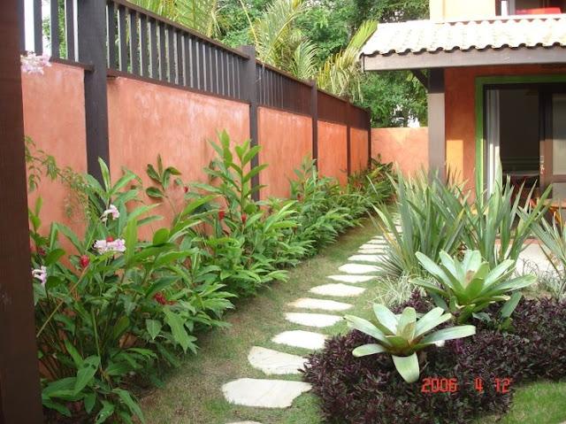 Formosa casa plantas trazem boas energias para nossa casa - Abbattimento muro interno senza dia ...