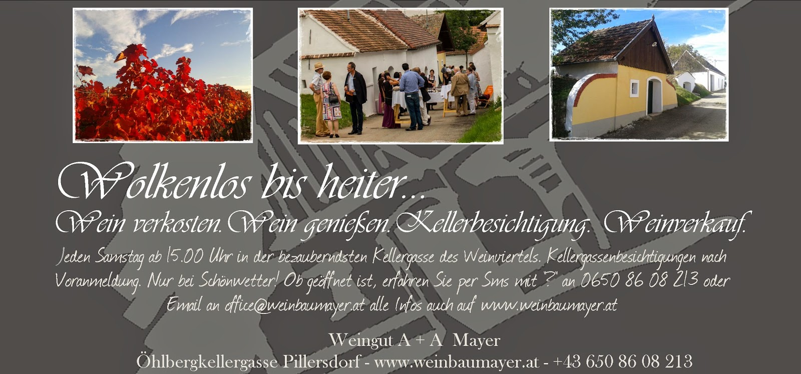 http://www.weinbaumayer.at/