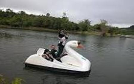 Danau Picung Lebong