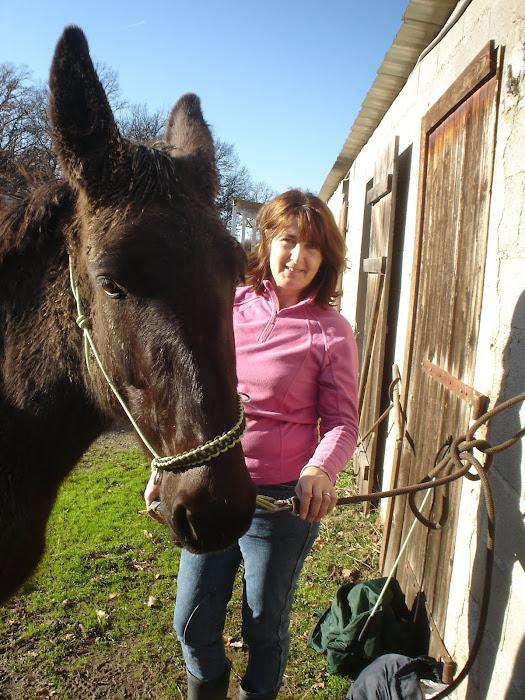 Ah ! cette tête de mule ..!