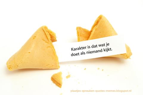 fortune cookie wijsheden