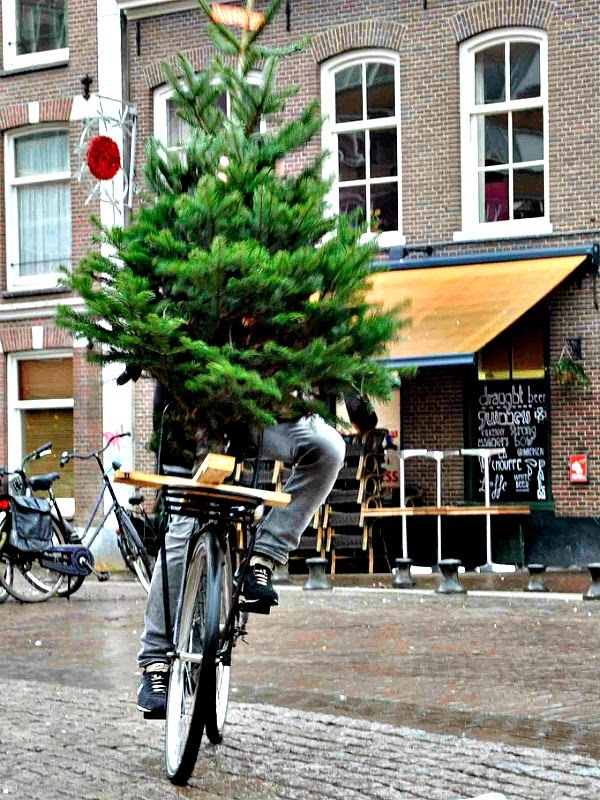bike at Christmas