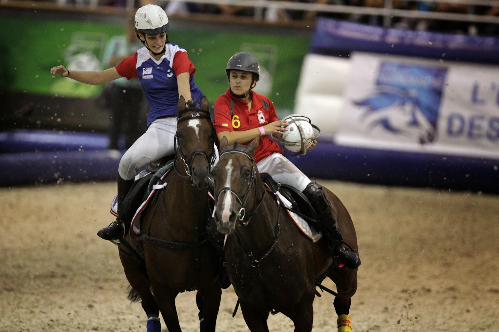 Horse-Ball game during 2014 FEI World Equestrian Games