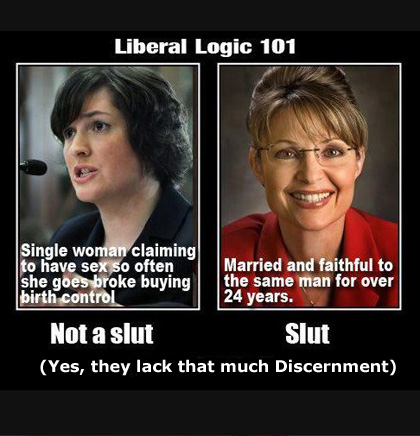 Liberal Logic, Sarah Palin versus Sandra Fluke