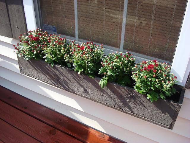 10 ideias de floreiras de janela