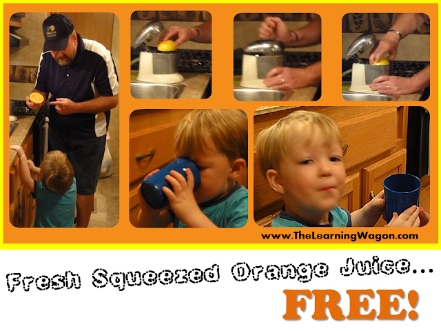 http://rvclassroom.blogspot.com/2013/12/the-fresh-squeeze-orange-juice.html