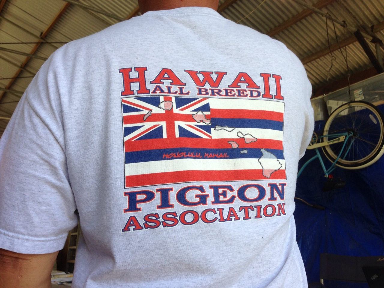 Hawaii all breed spring pigeon show for Waimanalo feed supply