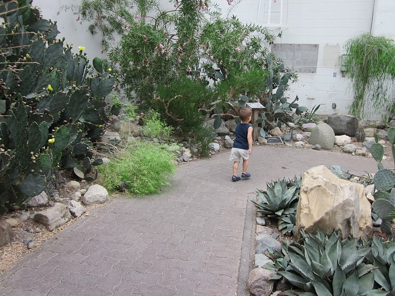 Another Feature That Makes The Botanical Conservatory Such A Great Spot For  Families Is The Effort Made To Interest Kids. There Were Several  Educational ...