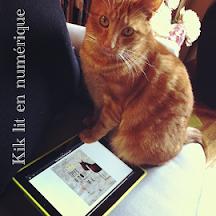 Kik lit en numérique