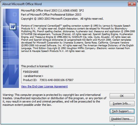 Microsoft Office 2003 Serial Key