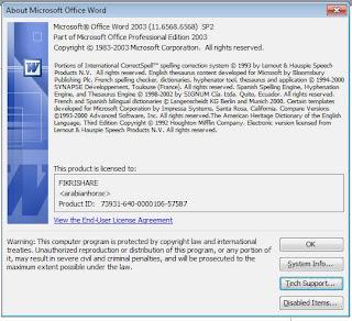 Microsoft Office 2003 Professional Full