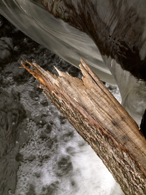 Central Park Waterfall with small log perched above
