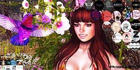 #Hash Spring Flowers
