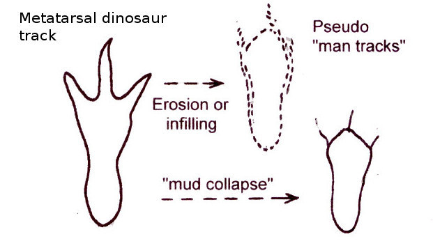 paluxy single guys For many years, creationists claimed that a set of human tracks were found alongside dinosaur tracks in the paluxy riverbed near glen rose, texas.