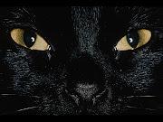 Black Cat Wallpapers 5 black cat wallpapers