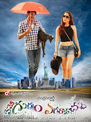 Emo Gurram Egaravachu Movie Wallpapers-thumbnail-13