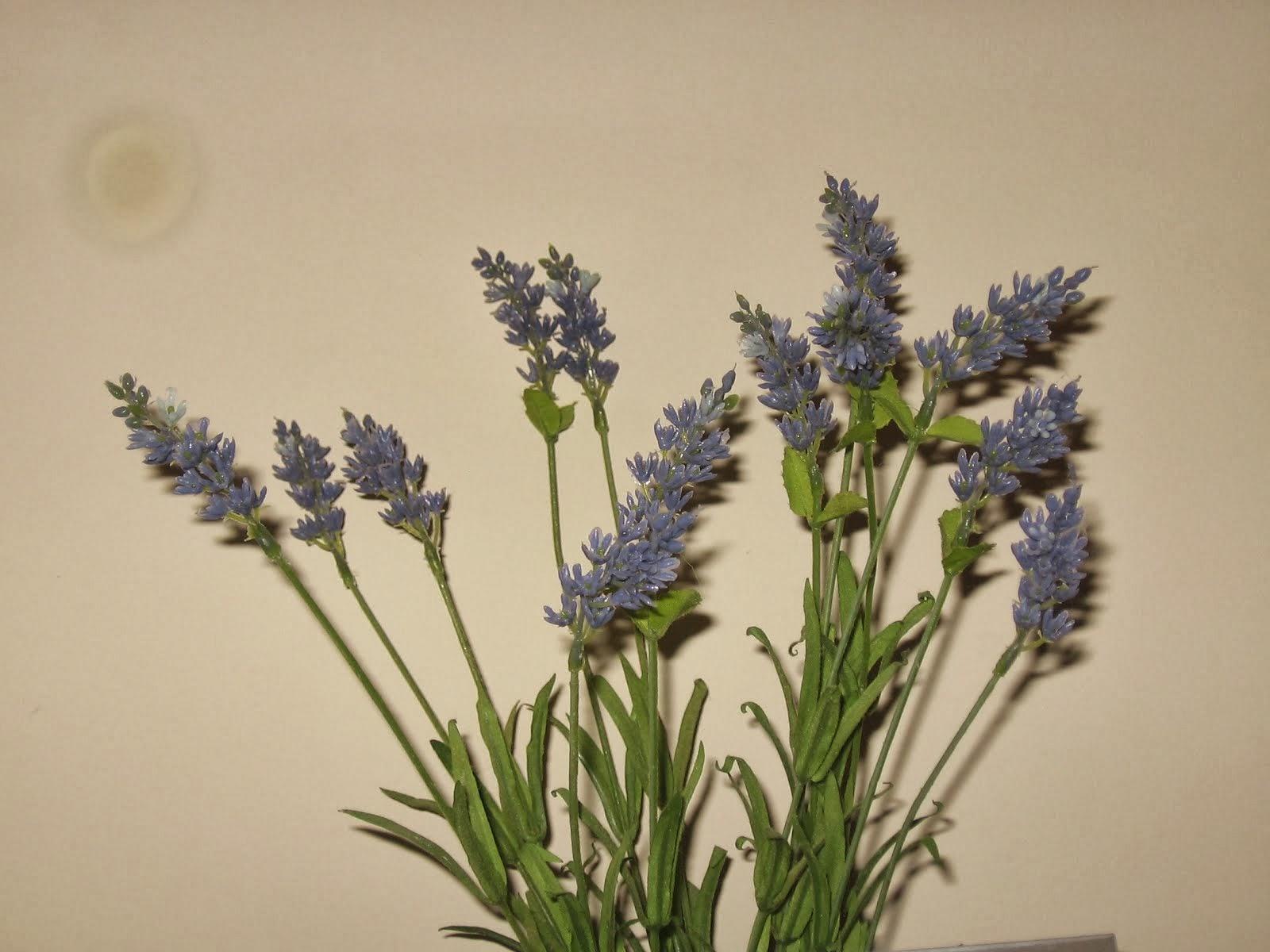 Aromas de lavanda de Provence