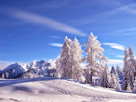 Chirurgie esthetique en hiver