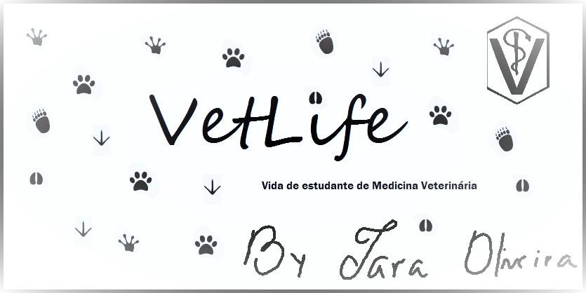 vetlife  estudo da anatomia - planos e eixos