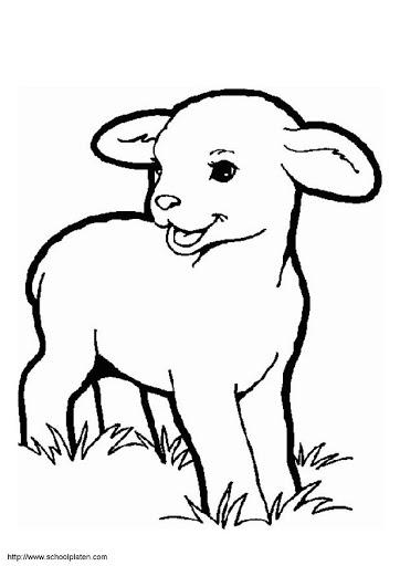 dibujos de ovejas para imprimir animales 03