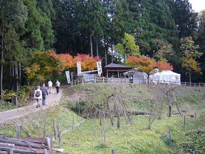 滋賀県・奥びわ湖 鶏足寺の紅葉