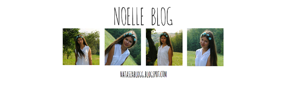 NoelleBlog