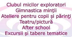 SALT - 2012 / 2013