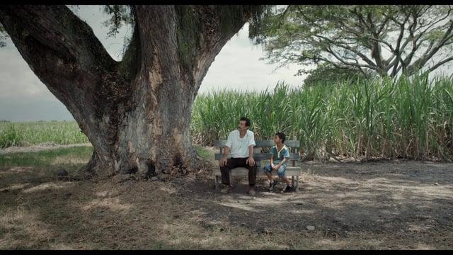 Crítica de la película La Tierra y la Sombra