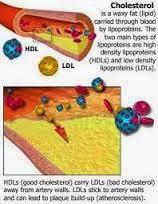 Cara Alami Menurunkan Kolesterol Jahat