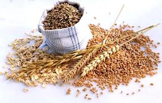 Farelo de trigo ajuda no auxilio para Perder Peso